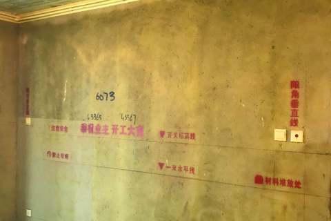 雍龙府-黄墙绿地/成品保护