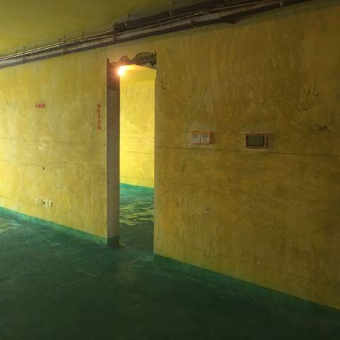 柏悦公馆-黄墙绿地