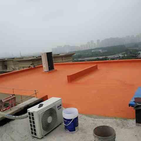 华盛南园-楼面屋顶防水修复