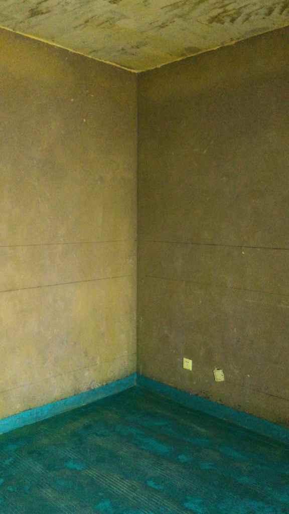 御景城-黄墙绿地