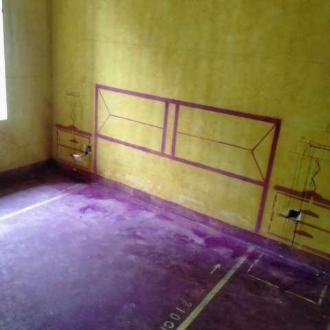 王大郢家园-黄墙紫地/3D全景放样-山水装饰