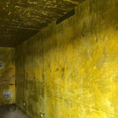 金茂湾-黄墙绿地-飞墨设计