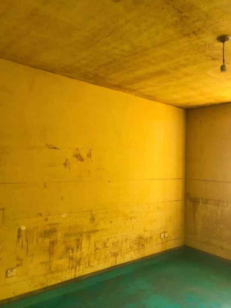 新年新村-黄墙绿地-飞墨设计
