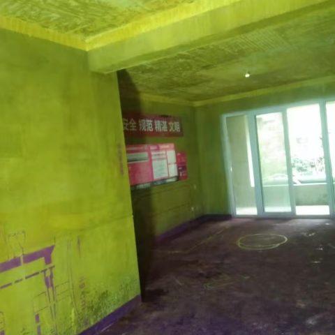 金大地翡翠公馆-黄墙紫地/3D全景放样-山水装饰